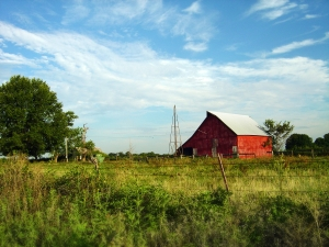 Red-barn-on-farm-1423314-m[1]