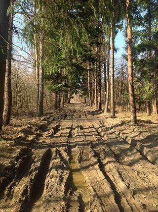 Muddy-road-694774_640[1]